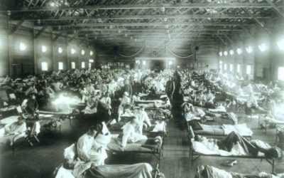 Where did the 1918 influenza come from?