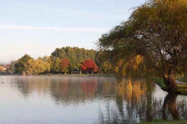Henley Lake, a popular recreation area in Masterton.